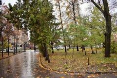 Route en blanc de parc d'automne Images stock