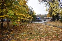 Route en blanc de parc d'automne Image libre de droits
