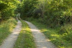 Route en bois Image stock
