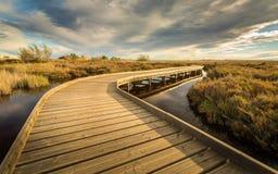 Route en bois dans le marécage del Moro photo libre de droits