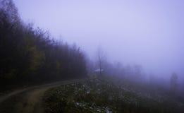Route en brouillard Images libres de droits