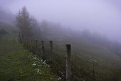 Route en brouillard Photos libres de droits