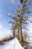 Route en hiver Photos libres de droits