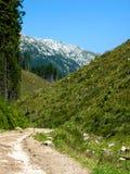 Route en montagnes de la Roumanie image libre de droits