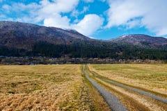 Route en Norvège photos libres de droits