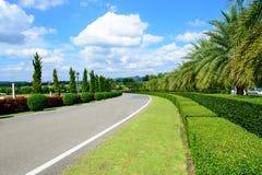 Route en parc avec le ciel bleu Image libre de droits