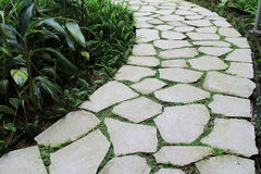 Route en pierre au jardin Images stock