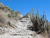 Route en pierre dans les Andes du Pérou images libres de droits
