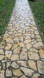 Route en pierre pour marcher entre l'herbe et la forêt photographie stock