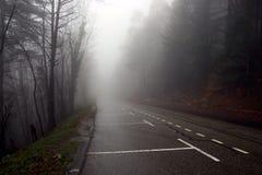 Route en regain Photo libre de droits