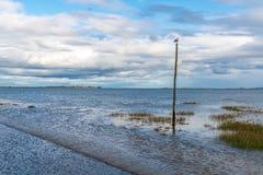 Route entre Beal et île sainte, Angleterre, R-U photographie stock