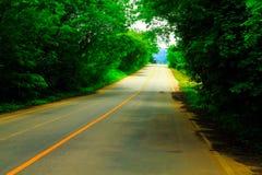 Route et arbre Images libres de droits
