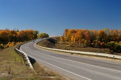 Route et arbres isolés en automne Photos stock