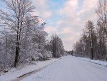 Route et beaux arbres d'hiver, Lithuanie Images libres de droits