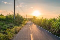 Route et canne à sucre rurales au coucher du soleil images libres de droits