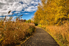 Route et feuillage d'automne autour de lui Photos stock