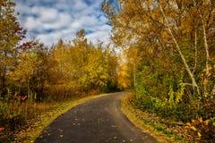 Route et feuillage d'automne autour de lui Photographie stock libre de droits