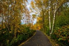 Route et feuillage d'automne autour de lui Photo stock