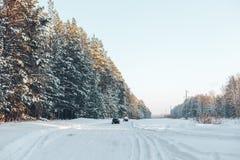 Route et forêt d'hiver Photographie stock libre de droits