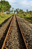 Route et palmier de longeron image stock