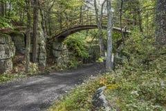 Route et pont de chariot Photo libre de droits