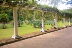 Route express en Rio de Janeiro Botanical Garden images libres de droits