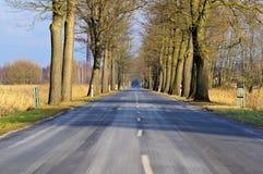 Route goudronnée Photo stock