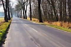 Route goudronnée Image stock