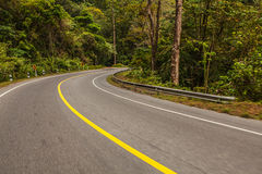 Route goudronnée dans la forêt tropicale Images libres de droits