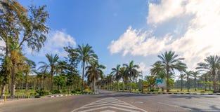 Route goudronnée encadrée par des arbres et des palmiers avec le ciel partiellement nuageux dans un jour d'été, parc public de Mo Images libres de droits