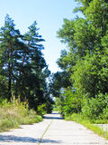 Route goudronnée et paysage d'été photo stock