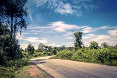 Route goudronnée par la forêt photographie stock libre de droits