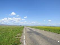 Route goudronnée par les prés Photo libre de droits