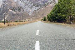 Route goudronnée vide entourée avec les arbres verts et les colonnes de courant électrique en montagnes Photographie stock