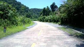 Route grise avec des poteaux et des ombres vertes d'arbre sous le ciel clair banque de vidéos