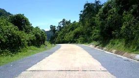 Route grise et blanche d'enroulement près des arbres verts en été banque de vidéos
