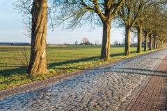 Route historique pavée avec des pavés ronds Images libres de droits