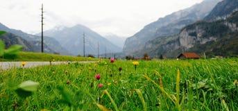 Route hors des montagnes, des poteaux de télégraphe et de l'herbe verte luxuriante Photographie stock