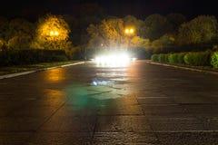 Route humide d'automne avec des lumières en parc le soir image libre de droits