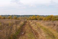 Route humide d'automne dans le domaine russe images stock