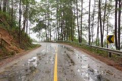 Route humide sous la forte pluie Photographie stock libre de droits