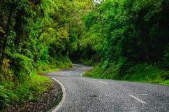 Route incurvée photos stock