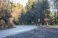 Route incurvée par la forêt Photographie stock
