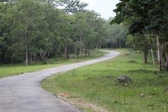 Route indienne photo libre de droits
