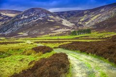 Route from Invermark to Mount Keen. Aberdeenshire, Scotland. Route from Invermark to Mount Keen and Queen`s Well. Glen Mark, Aberdeenshire, Scotland. Cairngorms royalty free stock image