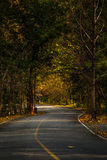 Route isolée images libres de droits