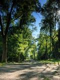 Route jusqu'au dessus Photo libre de droits