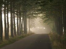 Route mystérieuse Photos stock