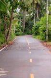 Route par des arbres dans le verger Photos stock