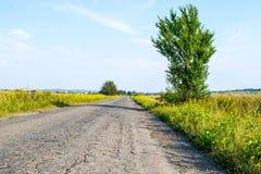 Route par des champs en Ukraine images libres de droits